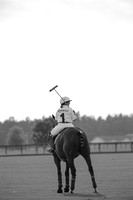 Meadow Hill Polo-209020140605