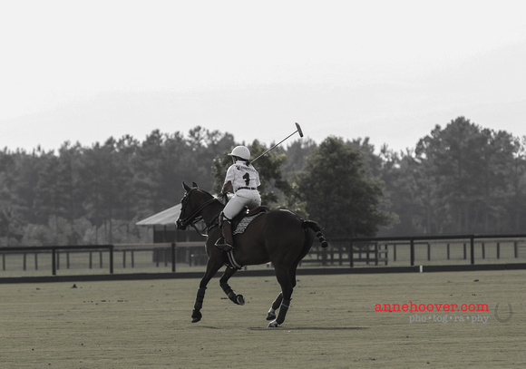 Meadow Hill Polo-222520140605